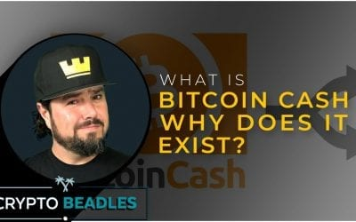 What is Bitcoin Cash⎮BCH⎮ How is Bitcoin Cash different from Bitcoin, Whats SLP?